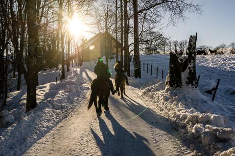 Adieu, Winterblues